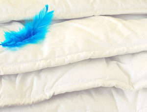 Duvet (feather)